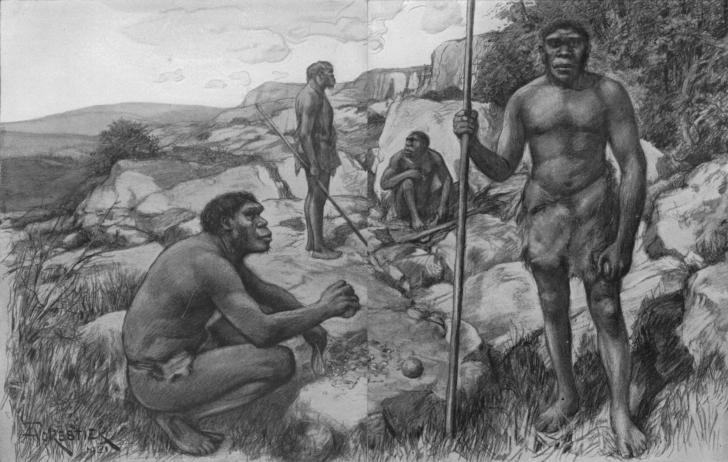 Homo-Neandert