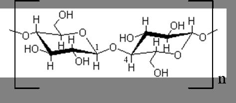 Fig.2 - Estrutura molecular da celulose