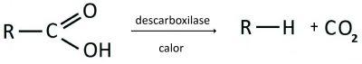 descarboxilacao