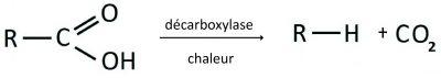 descarboxilacaofr