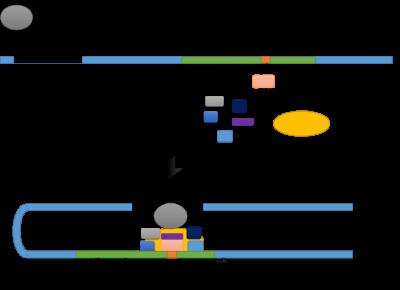 Figura 1 – Esquema do início da transcrição. A transcrição é iniciada com a ligação do fator TFIID à caixa TATA, seguida pela ligação  da RNA polimerase II e os restantes fatores de transcrição gerais ao promotor. O ativadore liga-se ao enhancer no DNA e estimula ou estabiliza a montagem do aparelho de transcrição basal.