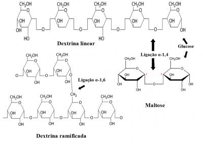 Figura 1 – Representação da estrutura molecular da dextrina e da maltose. Estes sacarídeos são constituídos por resíduos de glicose (mais concretamente D-glucopiranose). Os resíduos de glicose na maltose e na dextrina linear são unidos por ligações glicosídicas α-1,4. A ramificação da estrutura da dextrina deve-se às  ligações glicosídicas α-1,4.