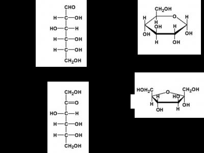 Figura 2 – Comparação entre a forma linear (projeção de Fisher) e a forma em anel dos monossacarídeos glucose e frutose