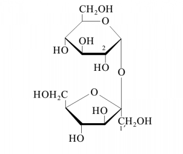 Figura 1 – Representação da estrutura química da molécula de sacarose. Este dissacarídeo é constituído por um resíduo de D-frutose (D-fructofuranose) e por um resíduo de D-glucose (D-glucopiranose).