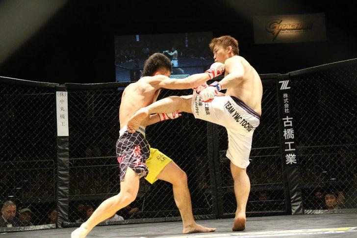 As Artes Marciais Mistas incluem golpes de combate em pé e técnicas de lutas no chão