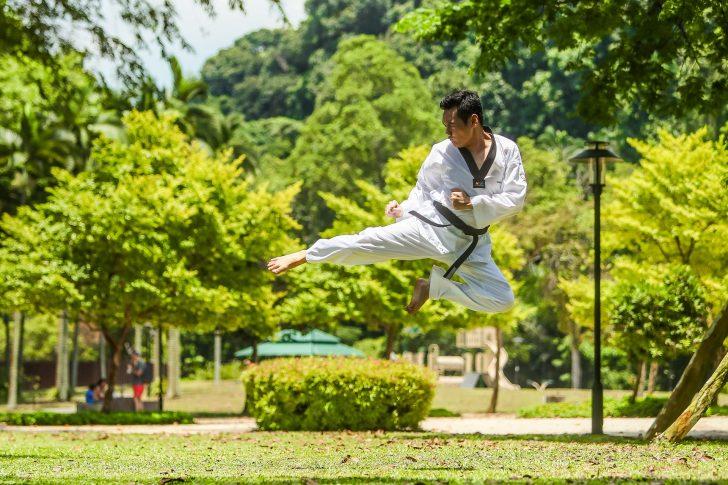 A origem das artes marciais remete para a origem da civilização