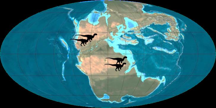 Celofise-mapa