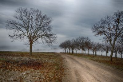 Montesinho é uma serra localizada a norte de Bragança