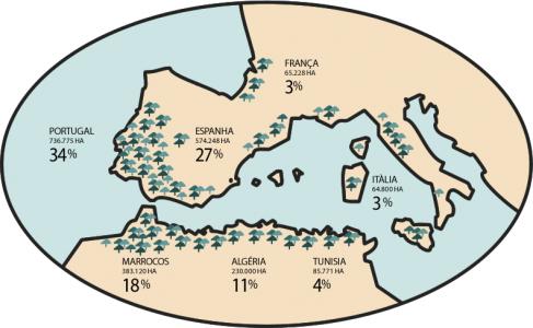 Mapa de localização do montado. Fonte: APCOR