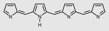 Figura 1- Uma molécula de tetrapirrol forma uma bilina.